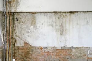 Jak odstranit plíseň z okna a stěny